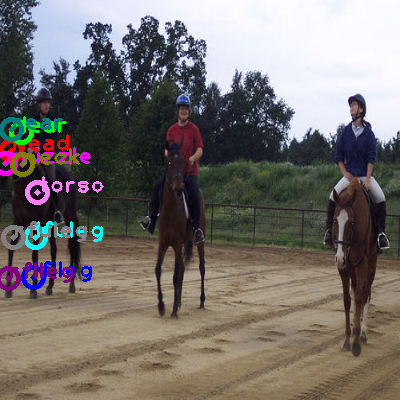 2010_000717-horse_0.png