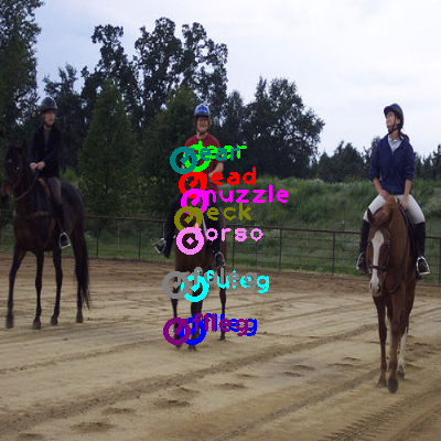 2010_000717-horse_1.png