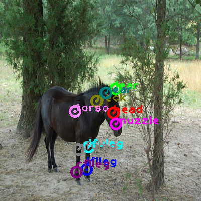 2010_000749-horse_0.png