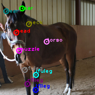2010_000838-horse_0.png