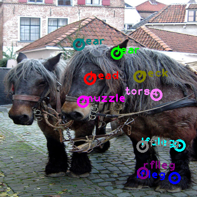 2010_000874-horse_0.png