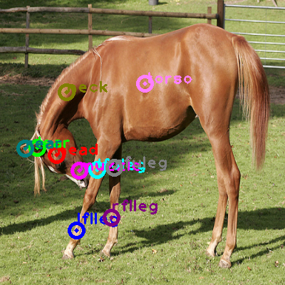2010_000923-horse_0.png