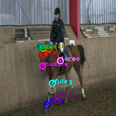 2010_001325-horse_0.png