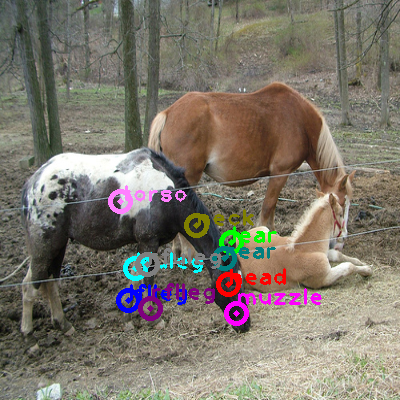 2010_001595-horse_0.png
