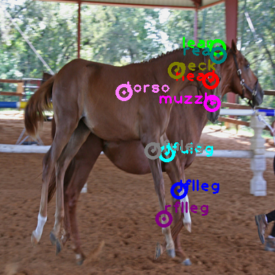 2010_001676-horse_0.png