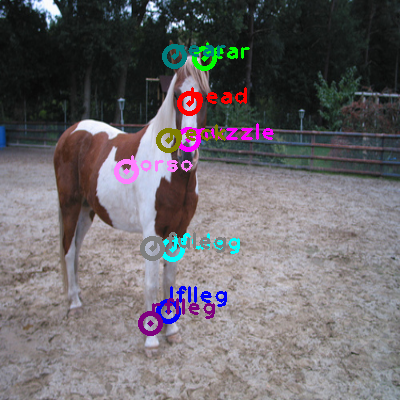 2010_002459-horse_0.png