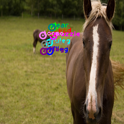 2010_002734-horse_0.png
