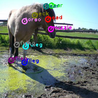 2010_003192-horse_0.png