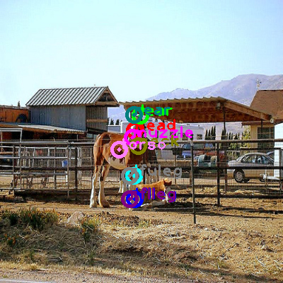 2010_004045-horse_0.png
