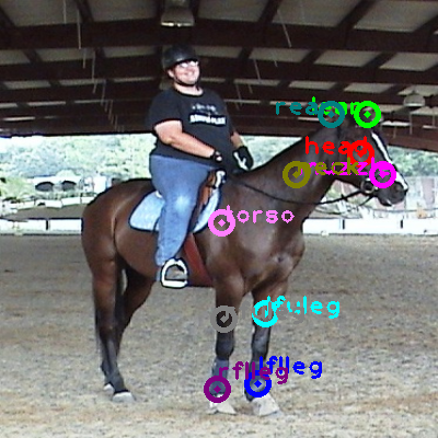 2010_004374-horse_0.png