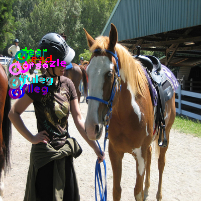 2010_004542-horse_0.png