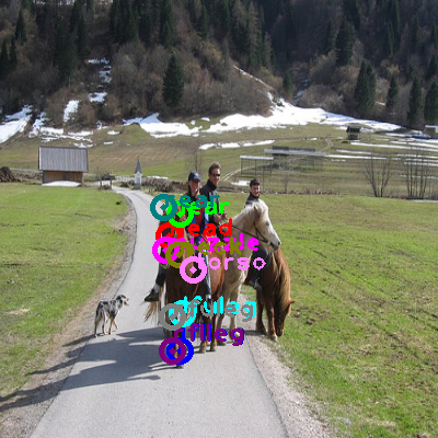2010_005270-horse_0.png