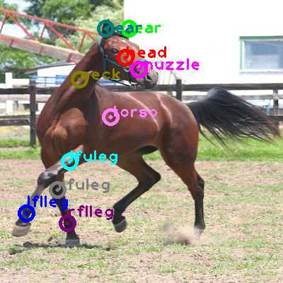 2010_005919-horse_0.png