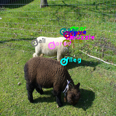 2008_006835-sheep_0.png