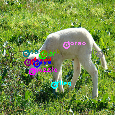 2009_000837-sheep_0.png