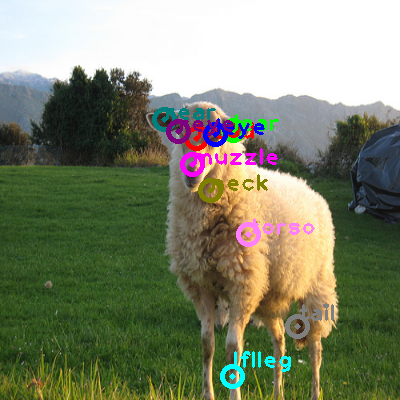 2009_000924-sheep_0.png