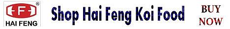 Go to Amazon-Hai Feng!