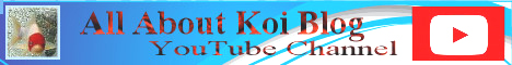 KoiTube Logo