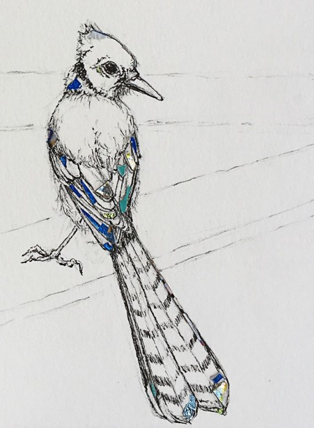 "Cocotos' Migrating ""NYC Blue Jay"""