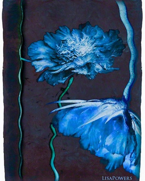 "Powers Unveils New ""Blue Flower"" Greeting Card Series"