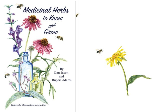Lyn Alice's Medicinal Herbs to Know and Grow Book Cover and Interiors