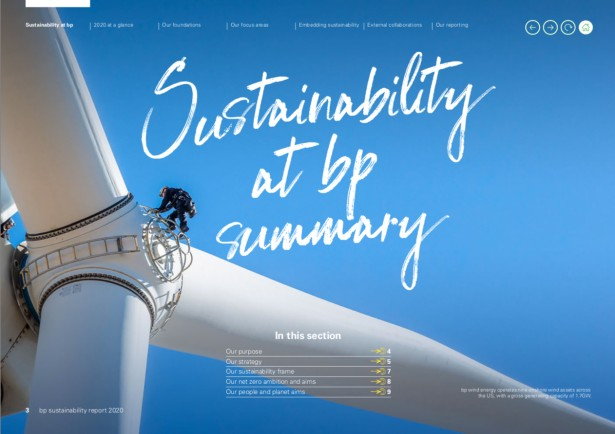 "Marc Morrison's ""Sustainability Report"" for BP"