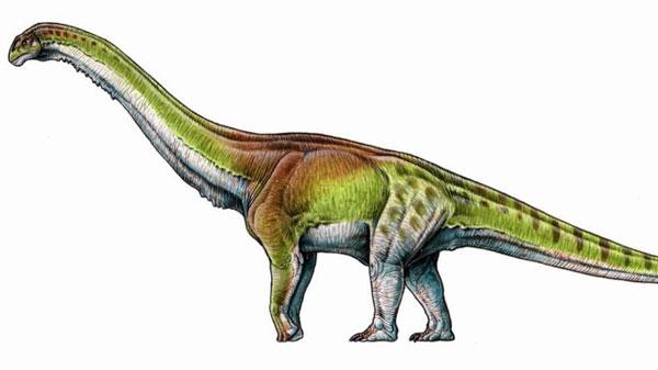 Así era el animal terrestre más grande que existió - 1
