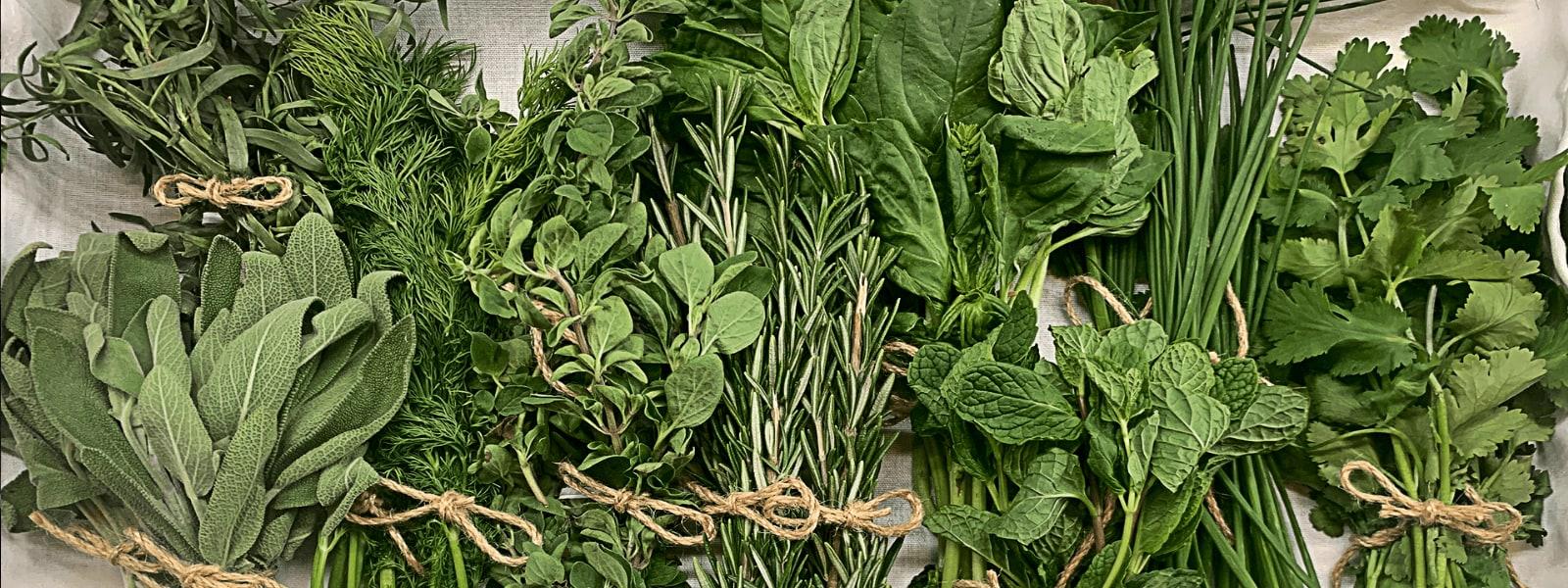 AMB Herbs