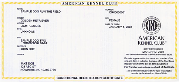 Conditional Registration Certificate and Pedigree – American Kennel Club
