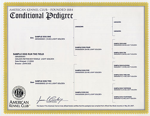 Conditional Registration Certificate and Pedigree – American
