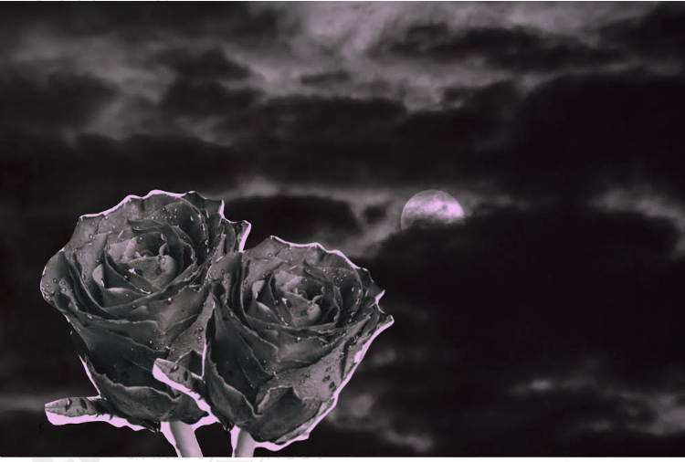 Image is a collage of dark clouds and a night sky with black roses for a goth wedding ceremony.
