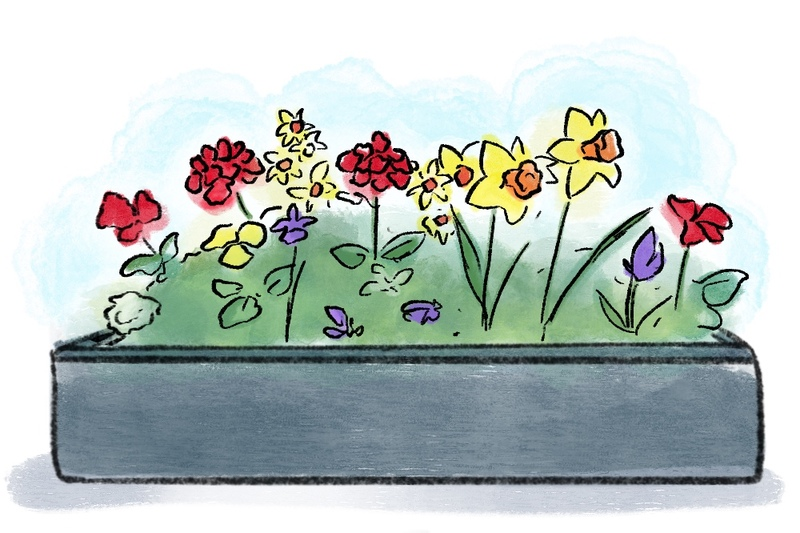 illustration of flower box with daffodils and crocus and other spring flowers to be used during wedding ceremony