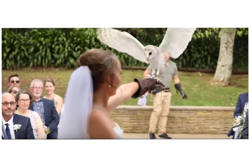 screenshot from Stephanie Agnew and Robbie's wedding ceremony, as the blind bride catches an owl during the service