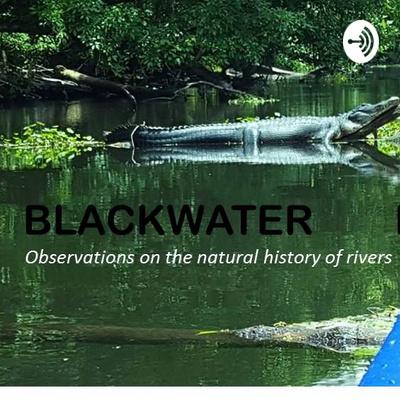 Blackwater Letters