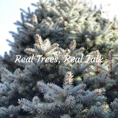 Real Trees, Real Talk - Why Nova Scotia Loves Real Christmas Trees
