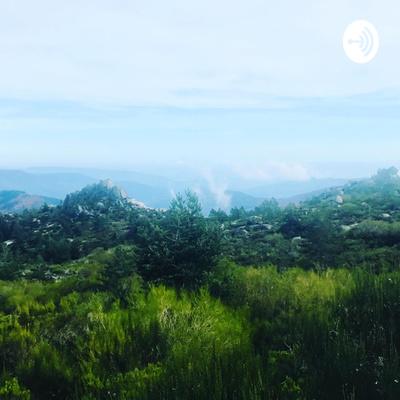 Rewilding Our Planet