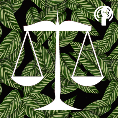 Pasifika Issues Podcast: Our Take on Legal Issues in the Pasifika Community