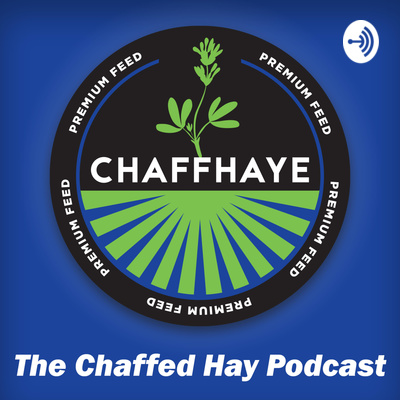 The Chaffed Hay