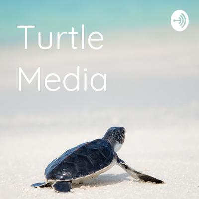Turtle Media