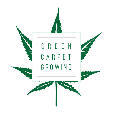 Green Carpet Growing Show: A podcast about growing cannabis at home