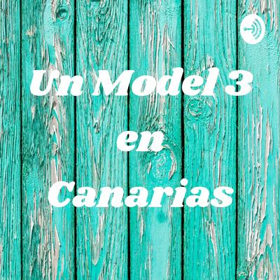 Un Model 3 en Canarias