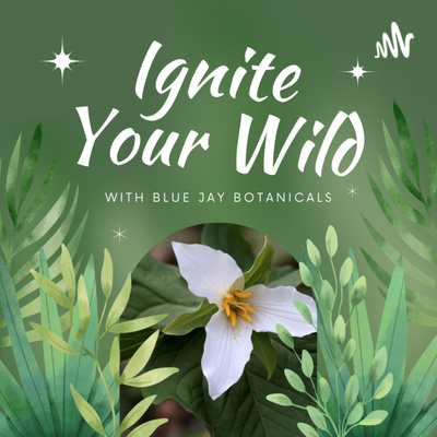 Ignite Your Wild