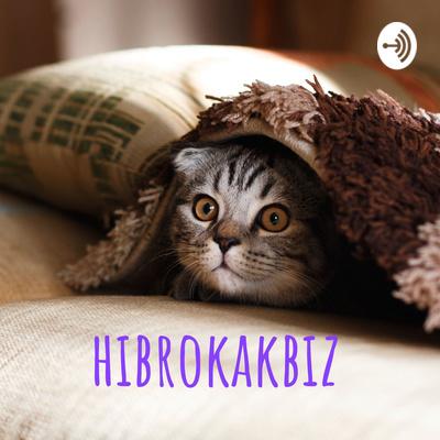 hibrokakbiz