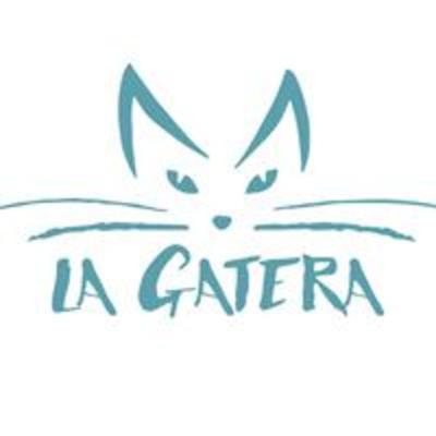 LA GATERA: Medicina Felina Para Veterinarios