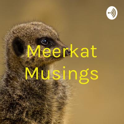 Meerkat Musings