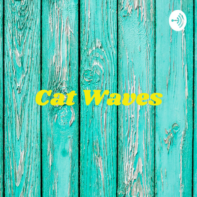 Cat Waves: Welcome to the World of Cat Kabira