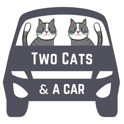 Two Cats & A Car