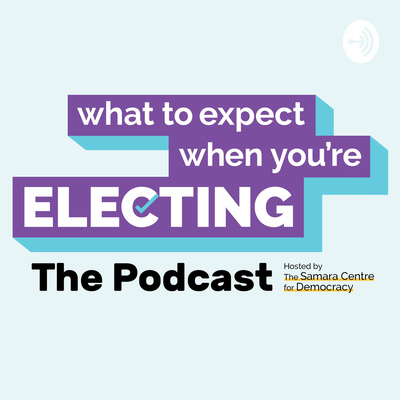 What to Expect When You're Electing