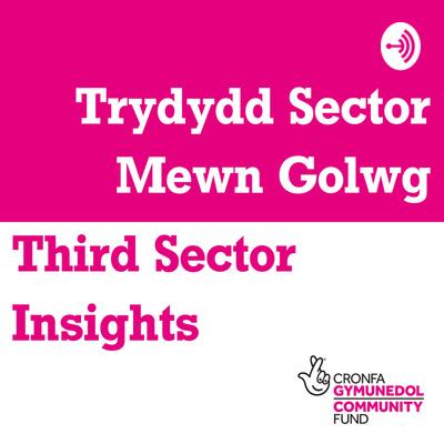 Third Sector Insights / Trydydd Sector Mewn Golwg