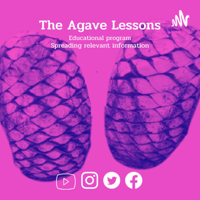 The Agave lessons and Mexican gastronomy. Agavecultura. A+ work © Ana G. Valenzuela-Zapata